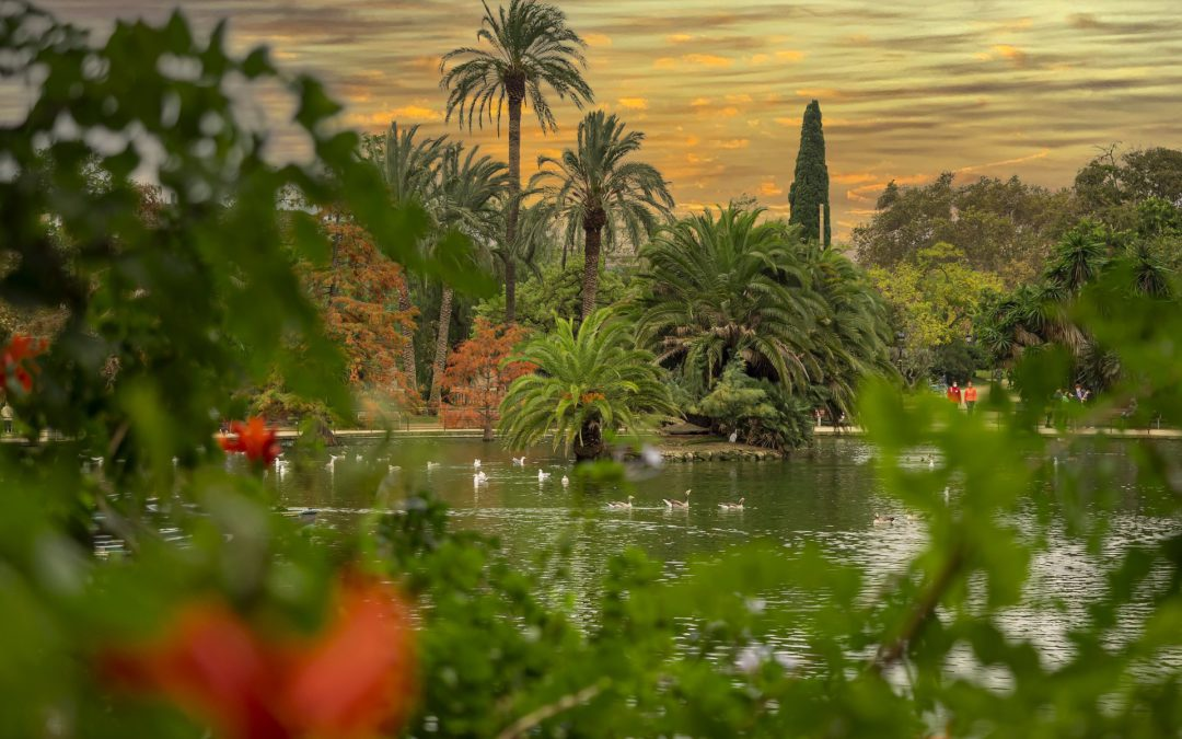 Los mejores parques de Barcelona para leer y estudiar